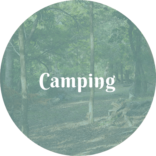 Would you like to camp at Ardor Wood Farm?